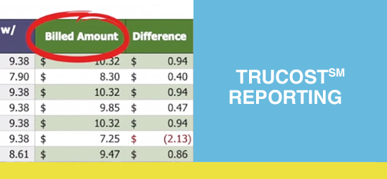 TruCost Reporting